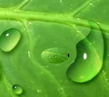 How to create Water Drops